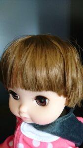 レミンちゃん髪の毛 前