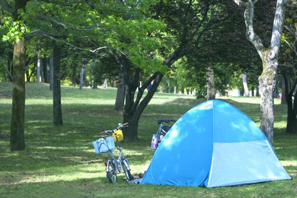 子連れピクニックの便利グッズ1 テント